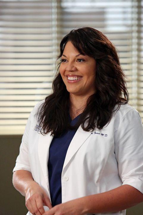 Callie (Sara Ramirez) freut sich über die hohe Entschädigung, die die Überlebenden des Flugzeugabsturzes erhalten. Sie will diesen Sieg feiern, doch... - Bildquelle: ABC Studios