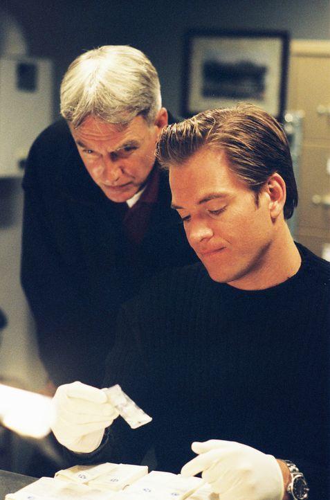 Arbeiten an einem schwierigen Fall: Gibbs (Mark Harmon, l.) und Tony (Michael Weatherly, r.) ... - Bildquelle: CBS Television