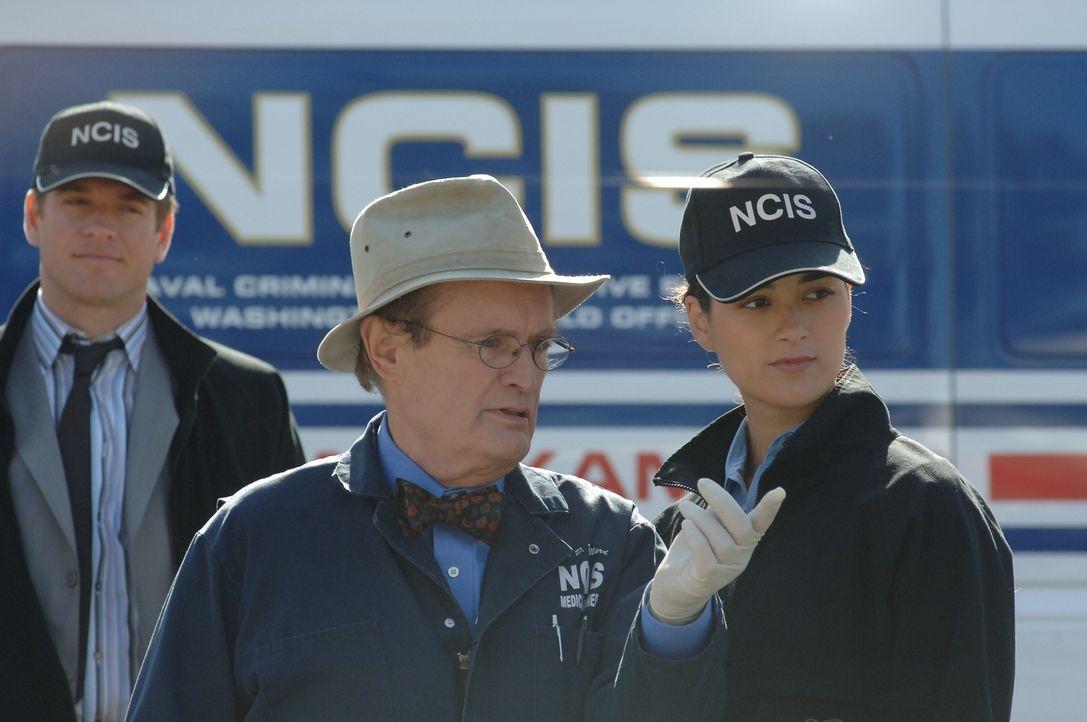 Wollen einen neuen Fall aufklären: DiNozzo (Michael Weatherly, l.), Ducky (David McCallum, M.) und Ziva (Cote de Pablo, r.) ... - Bildquelle: CBS Television