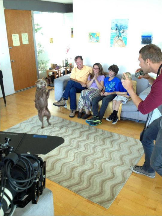 Brandon McMillan (r.) kümmert sich um ein neues Zuhause für den Mischling Emmitt ... - Bildquelle: Bryan Curb Litton Entertainment 2013
