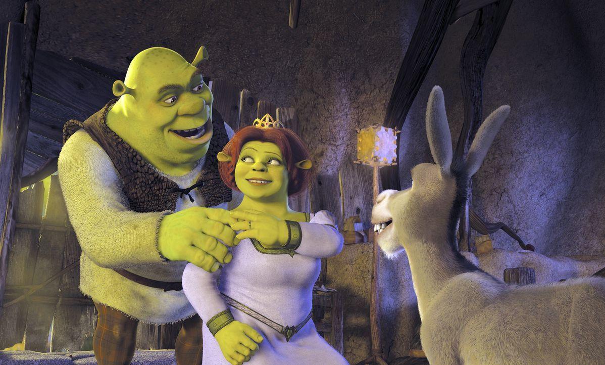 """Als nach den Flitterwochen Fionas Eltern zum Vorstellungstermin bitten, machen sich Fiona, M. und Shrek, l. auf ins Königreich """"Weit Weit Weg"""" - nat... - Bildquelle: DreamWorks SKG"""