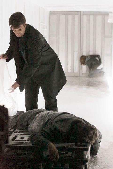 Kurz nachdem Castle (Nathan Fillion, l.) und Beckett (Stana Katic, r.) in einen Kühllaster gesperrt wurden, entdeckt Castle dort die Leiche von Jama... - Bildquelle: 2011 American Broadcasting Companies, Inc. All rights reserved.