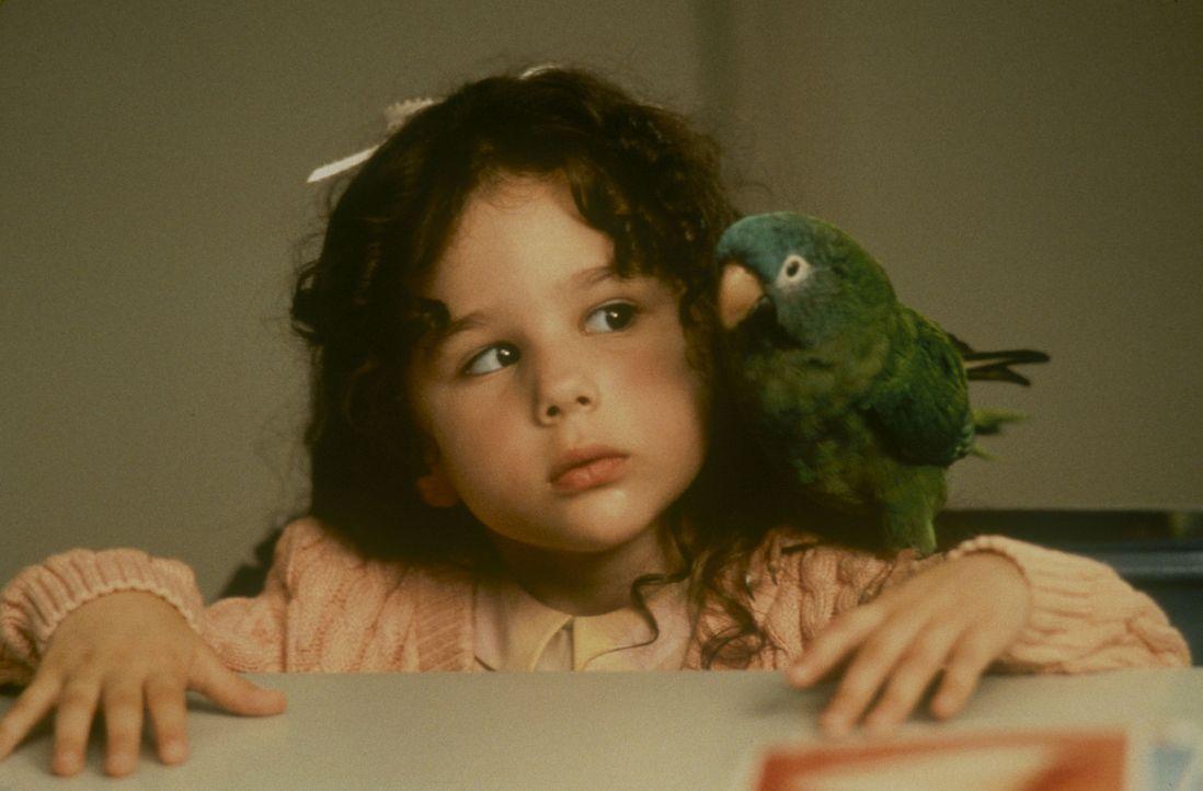Weil der gescheite Papagei Paulie die kleine Marie (Hallie Kate Eisenberg, l.) einfach plappern lässt, kann sie schon bald ihren Sprachfehler ableg... - Bildquelle: TM &   (1998) DREAMWORKS LLC. ALL RIGHTS RESERVED.