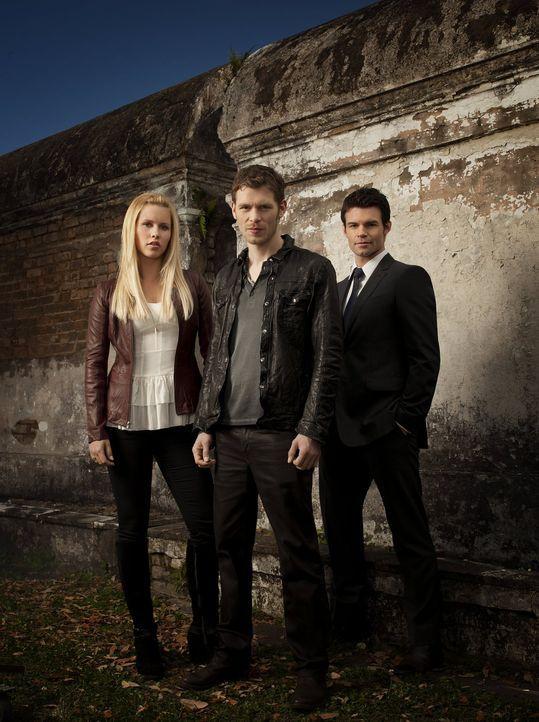(1. Staffel) - Für die Urvampire Rebekah (Claire Holt, l.), Klaus (Joseph Morgan, M.) und Elijah (Daniel Gillies, r.) steht die Familie an erster St... - Bildquelle: Warner Bros. Television