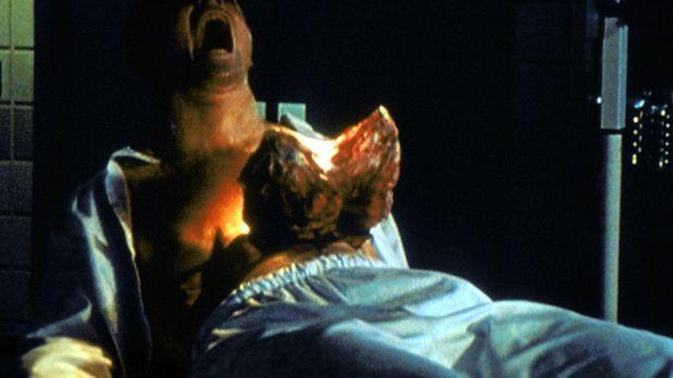 Für Miles Davidow (C. Thomas Howell) wird ein Horrorszenario Wirklichkeit: Na...