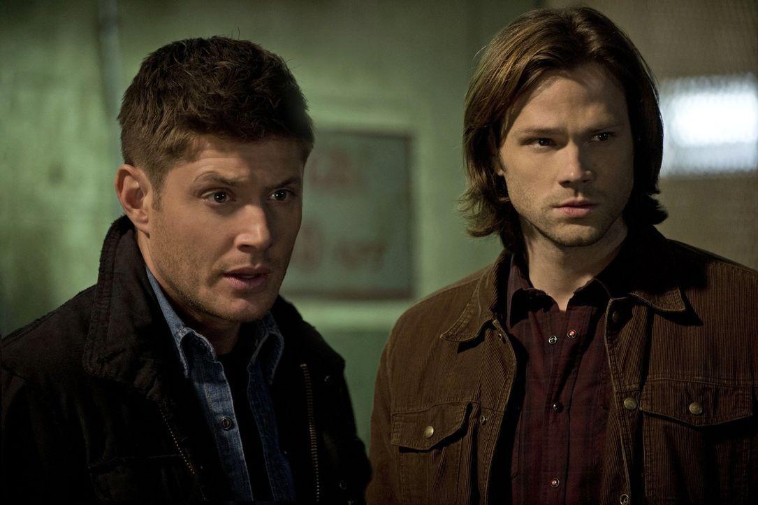 Ihr neuester Fall lässt selbst für Sam (Jared Padalecki, r.) und Dean (Jensen Ackles, l.) einige Fragen offen ... - Bildquelle: Warner Bros. Television