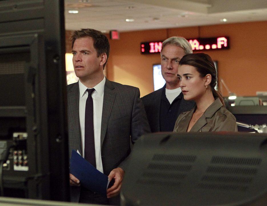 Bei den Ermittlungen in ihrem neuen Fall machen sie eine schockierende Entdeckung: DiNozzo (Michael Weatherly, l.), Gibbs (Mark Harmon, M.) und Ziva... - Bildquelle: CBS Television