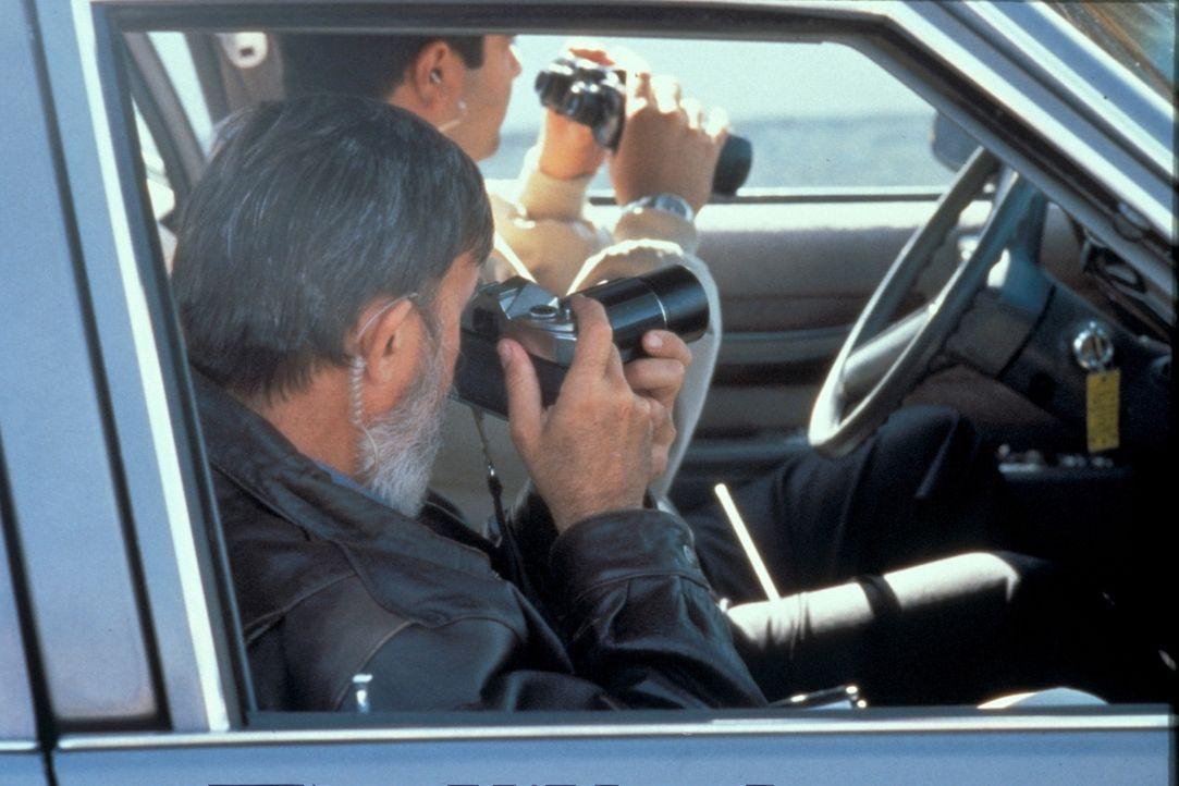 Verdeckte Ermittlungen ... - Bildquelle: New Dominion Pictures, LLC