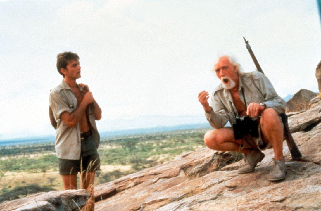 """Zwischen """"Lion Man"""" George Adamson (Richard Harris, r.) und dem jungen Engländer Tony Fitzjohn (John Michie, l.) entwickelt sich schon bald mehr al... - Bildquelle: Spartan Home Entertainment"""
