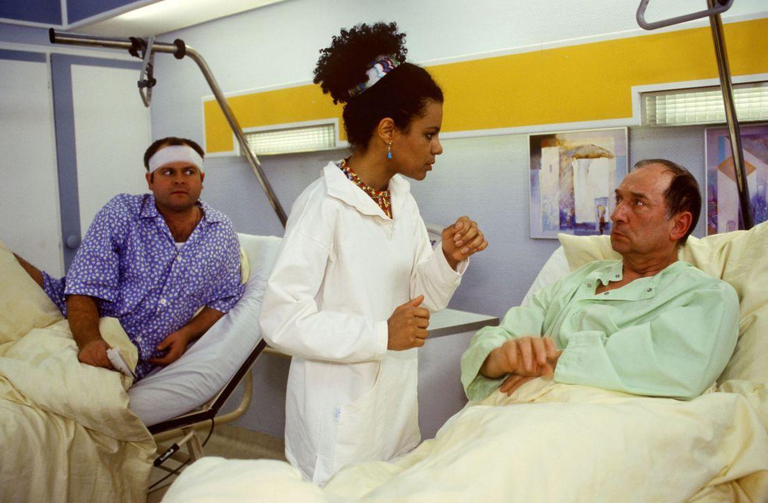 Der Bankangestellte Helmut Witte (Heinz Rennhack, r.) wehrt sich vehement gegen die Behandlung durch eine Schwarze! Als sich jedoch sein Gesundheits... - Bildquelle: Noreen Flynn Sat.1