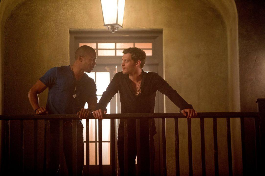 Marcel (Charles Michael Davis) und Klaus (Joseph Morgan)  - Bildquelle: Warner Bros. Entertainment Inc.