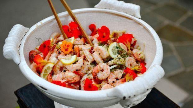 shrimp-1821387_1920