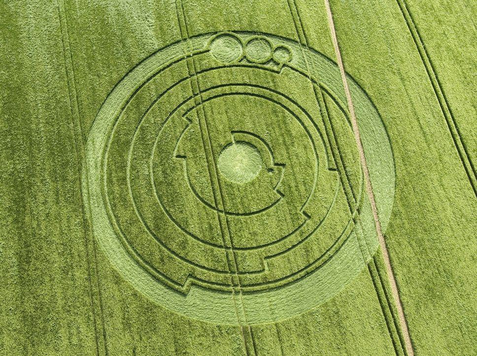 Es gibt über 10.000 Meldungen von Kornkreisen aus 50 verschiedenen Ländern. Diese seltsamen Gebilde können einfache Kreise sein, aber auch komplexe... - Bildquelle: 2015 A&E TELEVISION NETWORKS, LLC. ALL RIGHTS RESERVED.