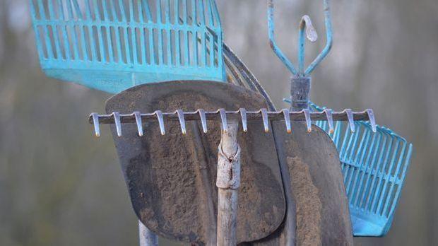 Werkzeug-Garten-Rechen-pixabay