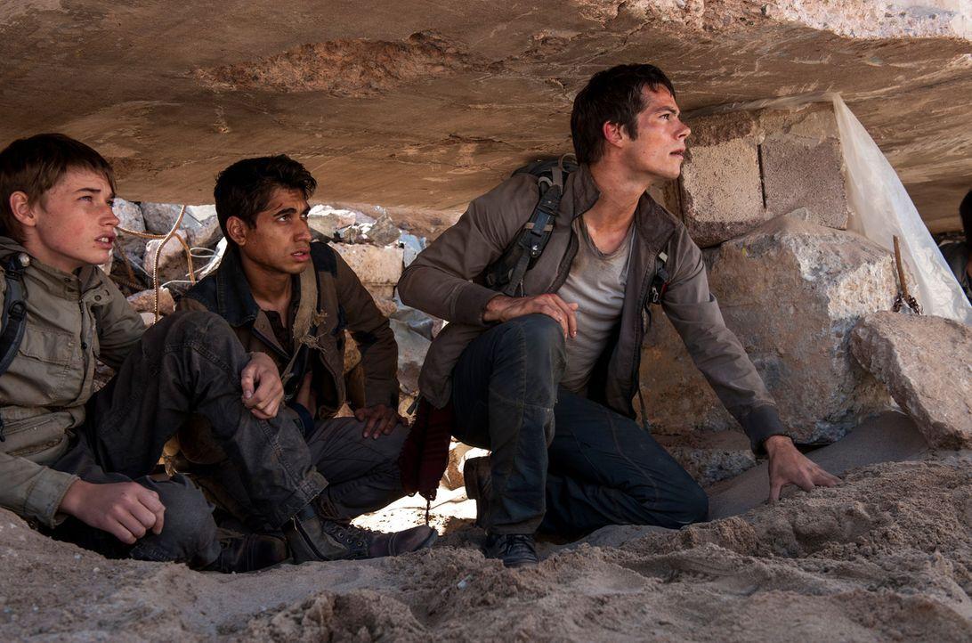 Das Ziel von Thomas (Dylan O'Brien), Winston (Alexander Flores, M.), Aris (Jacob Lofland, l.) und den anderen Kids ist eine Widerstandsgruppe, die i... - Bildquelle: 2015 Twentieth Century Fox Film Corporation.  All rights reserved.