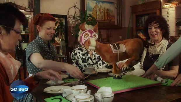 Bundes Cake Contest