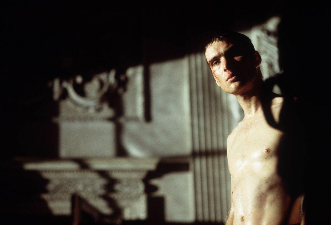 Schließlich wird Jim (Cillian Murphy) klar, dass er nur überleben kann, wenn er gegen das Böse kämpft, ganz egal in welcher Form es ihm begegnet ...... - Bildquelle: 2002 Twentieth Century Fox Film Corporation. All rights reserved.