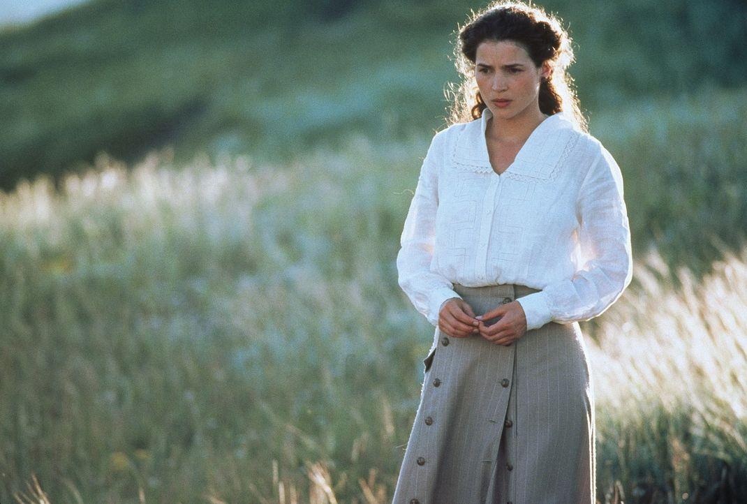 Die schöne, leidenschaftliche Susannah (Julia Ormond) wird drei Brüdern zum Verhängnis ... - Bildquelle: TriStar Pictures