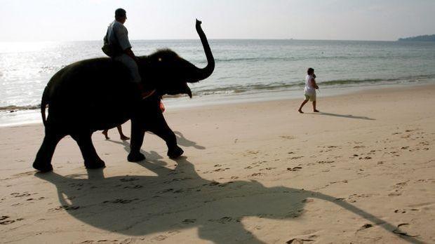 Thailand_Elefant
