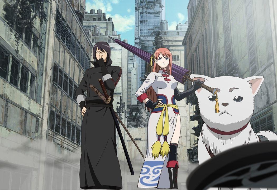 Gemeinsam mit Shinpachi (l.) und Kagura (r.), die inzwischen erwachsen und mächtige Krieger geworden sind, muss Gintoki die Welt retten. Doch vorher... - Bildquelle: Hideaki Sorachi/GINTAMA the Movie