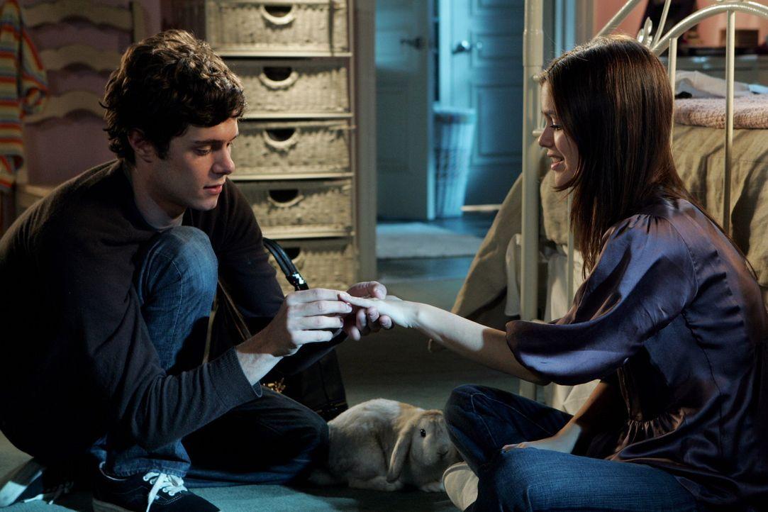 Summer (Rachel Bilson, r.) und Seth (Adam Brody, l.) begutachten den Schwangerschaftstest ... - Bildquelle: Warner Bros. Television