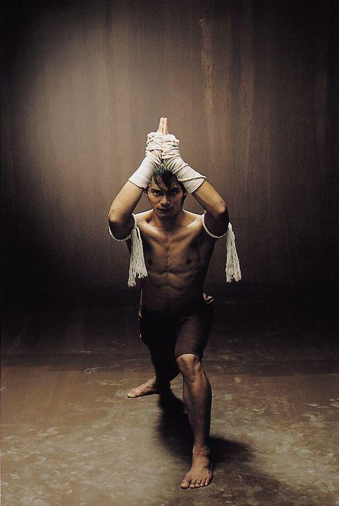 Mit der Hilfe von George hofft der in der überlieferten Kampfkunst Muay Thai ausgebildete Waisenjunge Ting (Tony Jaa), dem Dieb die gestohlene Budd... - Bildquelle: e-m-s new media AG