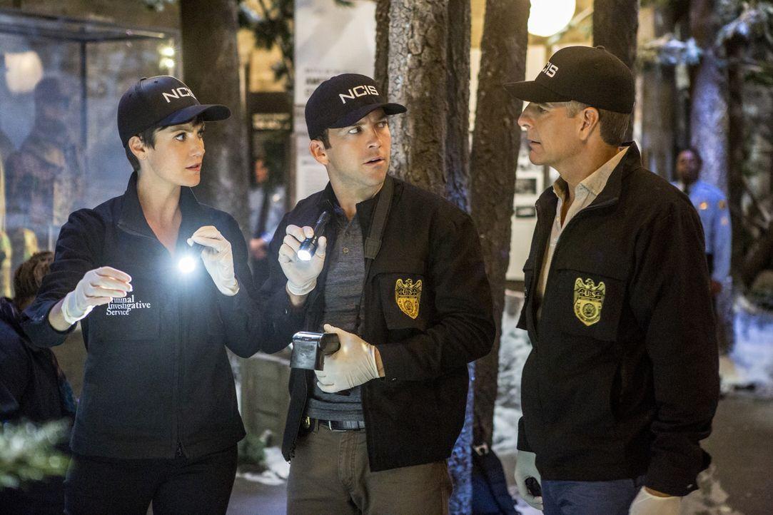 Ein neuer Fall wartet auf Pride (Scott Bakula, r.), Brody (Zoe McLellan, l.) und Lasalle (Lucas Black, M.) ... - Bildquelle: 2014 CBS Broadcasting Inc. All Rights Reserved.