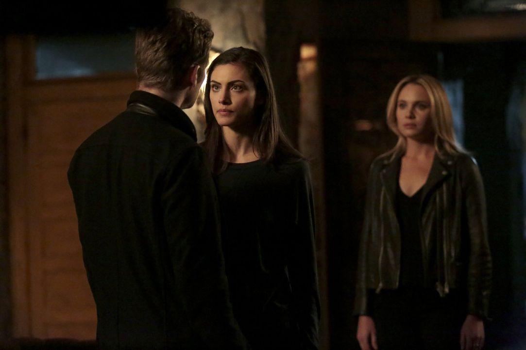 Während Hayley (Phoebe Tonkin, r.) mit dem Verlust ihres Mannes zu kämpfen hat, kämpft Klaus (Joseph Morgan, l.) mit der unbändigen Cami (Leah Pipes... - Bildquelle: Warner Bros. Entertainment, Inc.