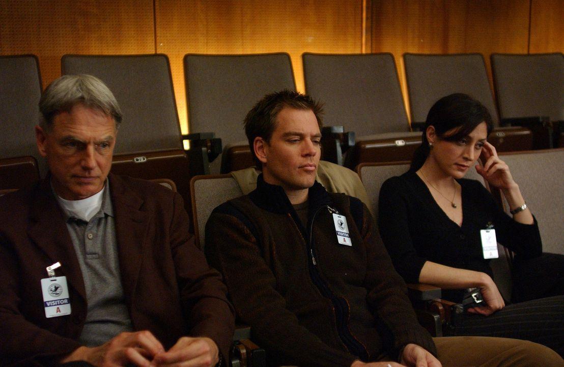 Versuchen einen neuen Fall zu lösen: Leroy Gibbs (Mark Harmon, l.), Tony Dinozzo (Michael Weatherly, M.) und Kate Todd (Sasha Alexander, r.) ... - Bildquelle: CBS Television