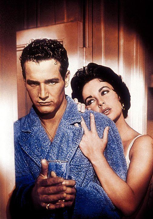 """Elizabeth Taylor in """"Die Katze auf dem heißen Blechdach"""" - Bildquelle: Warner Bros. Entertainment Inc."""