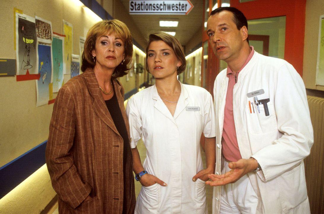 Stephanie (Claudia Schmutzler, M.) und Dr. Stein (Christoph Schobesberger, r.) überlegen gemeinsam mit Frau Lubosch (Uta Schorn, l.), wie sie deren... - Bildquelle: Noreen Flynn Sat.1
