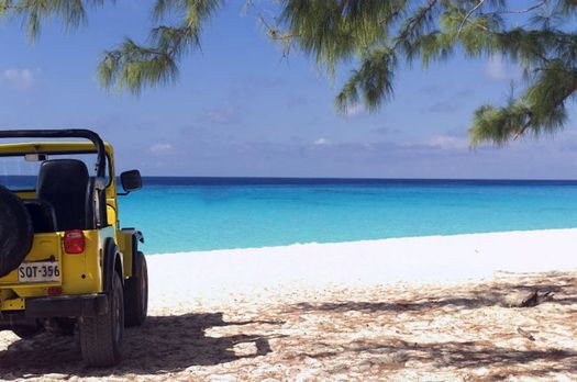 "The Paradise Virus - Das paradiesische ""Barsato Island"" gilt bei To..."