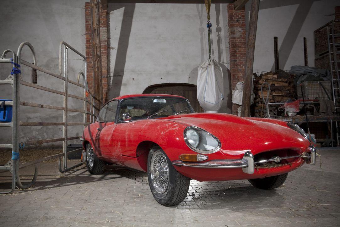 """Endlich startet wieder eine Umbauaktion bei """"Abenteuer Auto"""": Die Redaktion widmet sich dieses Mal einer der Ikonen der Automobilgeschichte schlecht... - Bildquelle: kabel eins"""