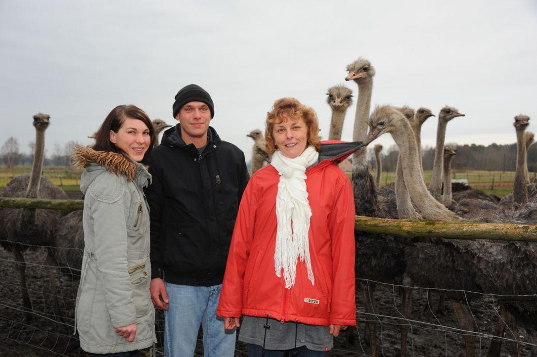 Nicole (l.), Doris (r.) und Enrico (M.) hoffen, dass Sternekoch Frank Rosin ihnen helfen kann ... - Bildquelle: kabel eins