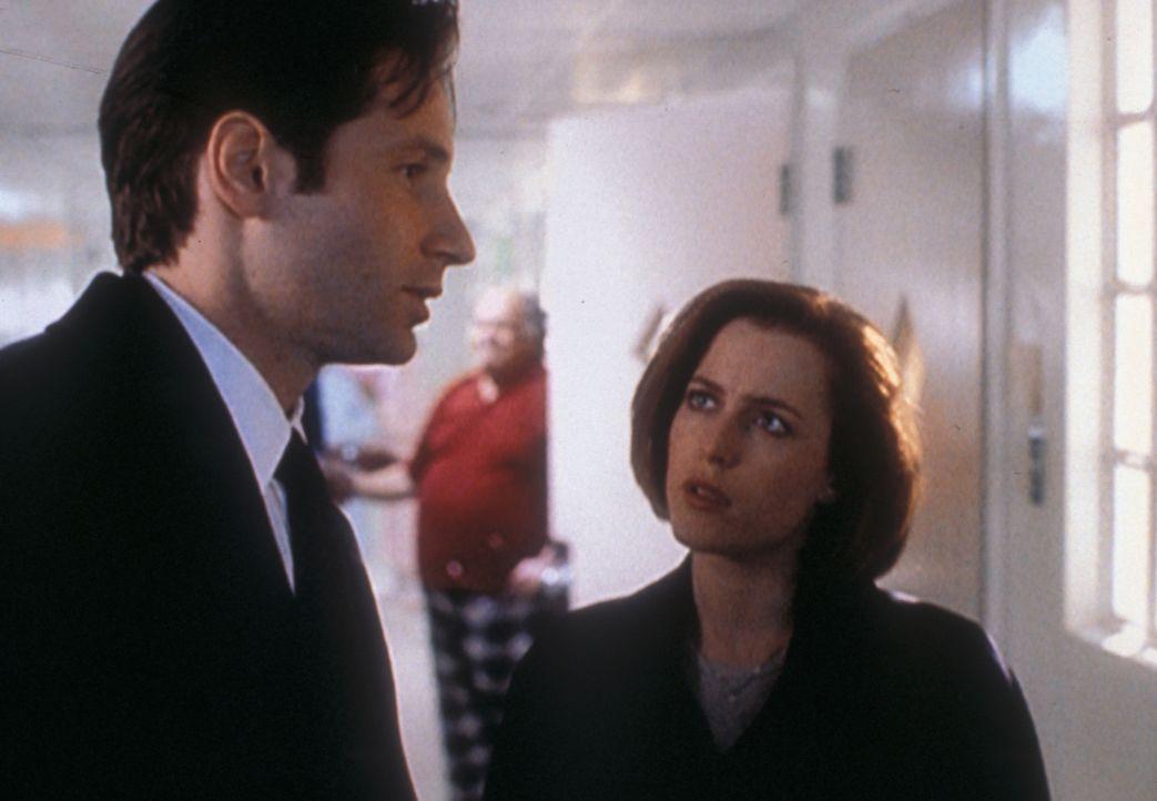 Mulder (David Duchovny, l.) und Scully (Gillian Anderson, r.) sollen in einer Nervenheilanstalt einen Verdächtigen verhören, dem mehrere Morde angel... - Bildquelle: TM +   2000 Twentieth Century Fox Film Corporation. All Rights Reserved.
