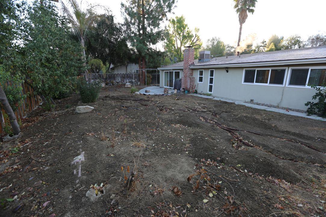 Der Garten von Alex und Ruth ist übersät von Baumwurzeln, die jede Bemühung des Paares, den Garten zu verschönern zerstört haben. Jetzt rückt Sara B... - Bildquelle: 2014, DIY Network/Scripps Networks, LLC. All RIghts Reserved.