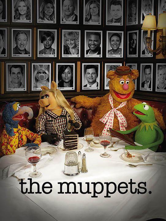 (1. Staffel) - Die Muppets sind wieder da: Kermit (r.), Miss Piggy (2.v.l.), Gonzo (l.) und Fozzie Bär (2.v.r.) ... - Bildquelle: ABC Studios