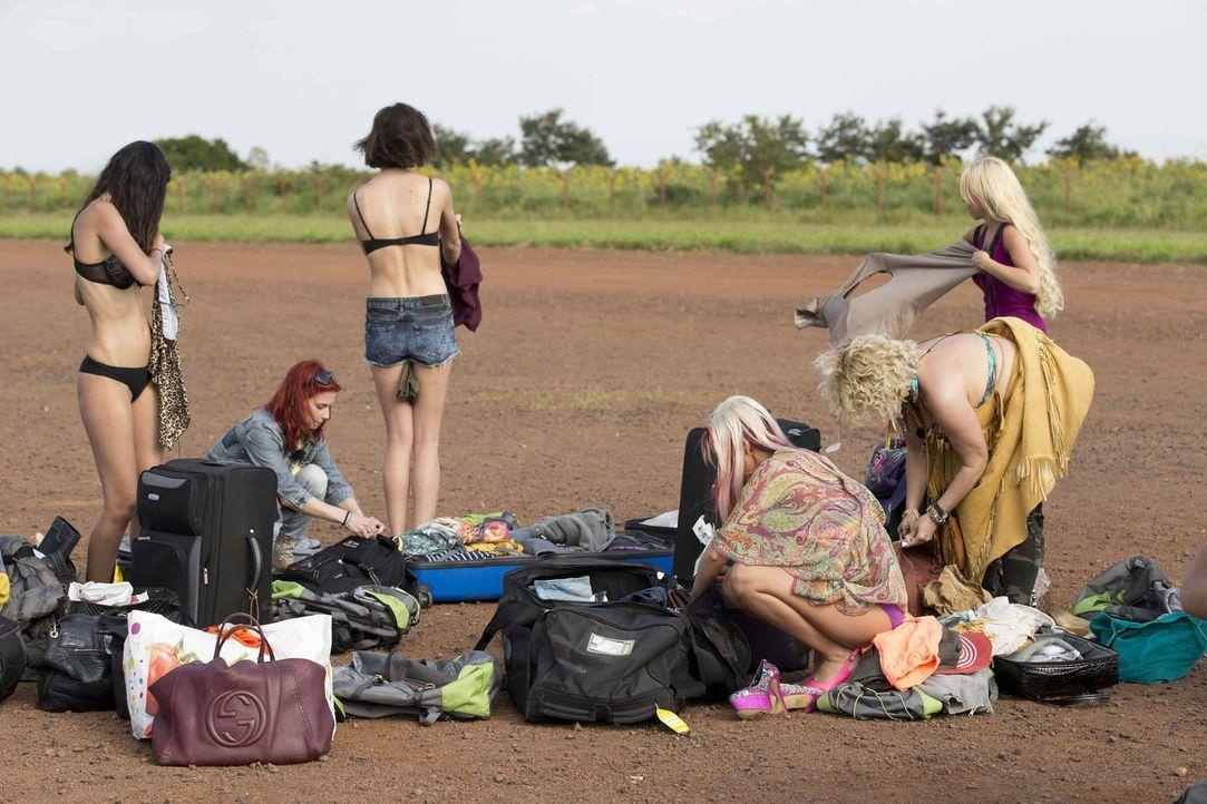 Bereiten sich auf ihr Abenteuer vor: (v.l.n.r.) Micaela, Bettie, Tessa, Sexy Julia, Sabrina und Nina ... - Bildquelle: Guido Ohlenbostel ProSieben