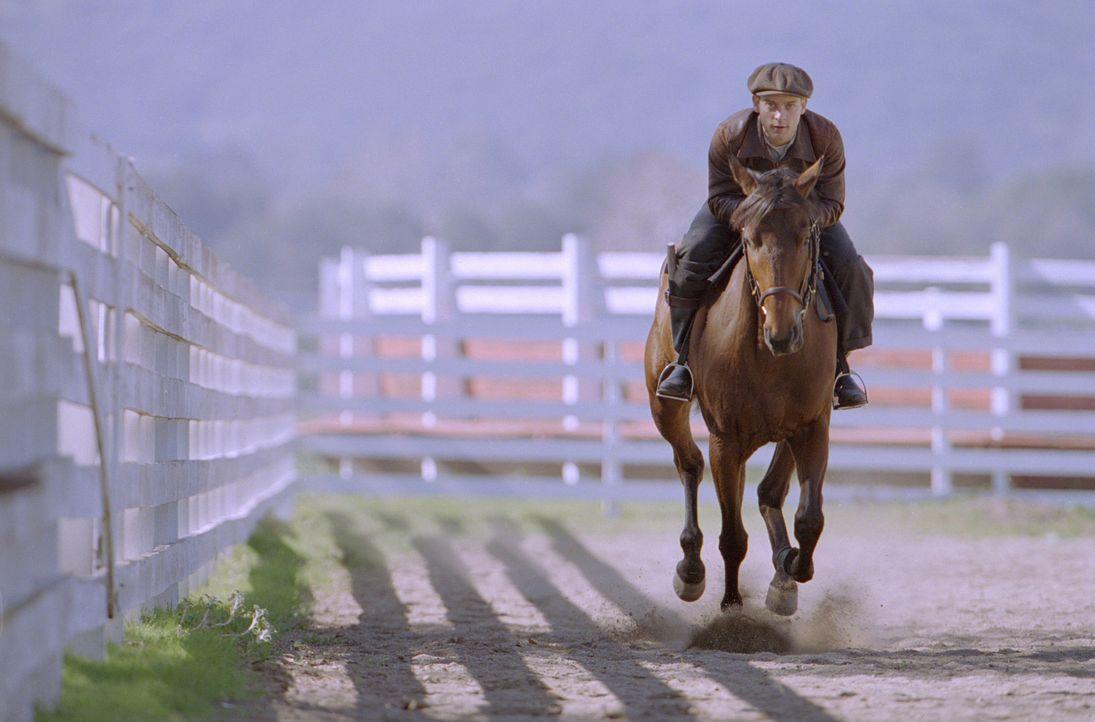 Mit unorthodoxen Trainingsmethoden begegnen Tom Smith und Red Pollard (Tobey Maguire) dem lethargischen Charakter des Pferdes. Nach vier harten Jahr... - Bildquelle: Francois Duhamel 2003 Universal Studiosand DREAMWORKS LLC..All Rights Reserved.
