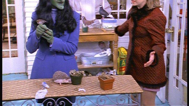 Sabrina (Melissa Joan Hart, r.) ist sehr enttäuscht, als Cousine Susie (Sonje...