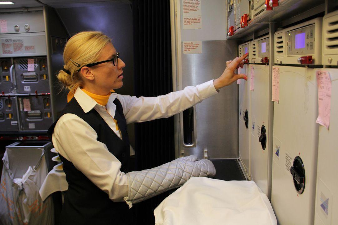 Darauf haben die Flugzeugfans in Deutschland gewartet. Die LH bekommt ihren ersten Superflieger A380. Eine Premiere für Crew, Bodenpersonal, Techni... - Bildquelle: SAT.1
