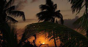 Urlaub buchen_2016_04_07_Reise buchen online_Bild1_pixabay_gregovish