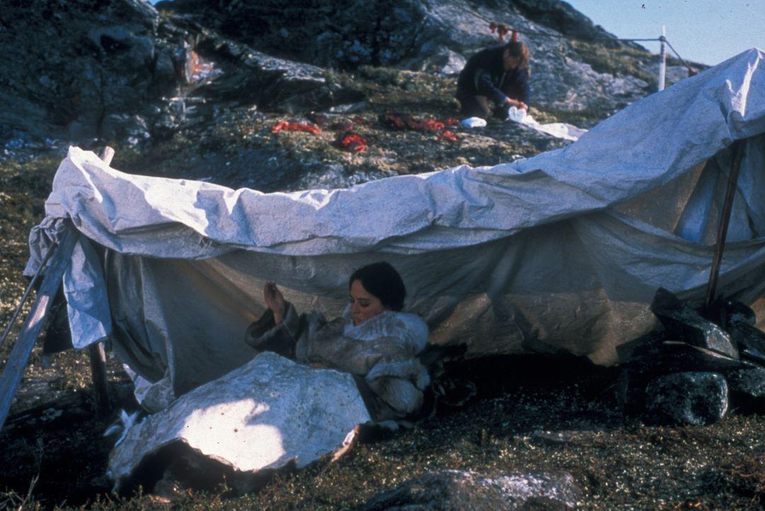 Charlie Halliday (Barry Pepper, r.) lernt viel über das Leben in der Wildnis von der rätselhaften Inuit-Frau Kanaalaq (Annabella Piugattuk, l.) ... - Bildquelle: Overseas Filmgroup