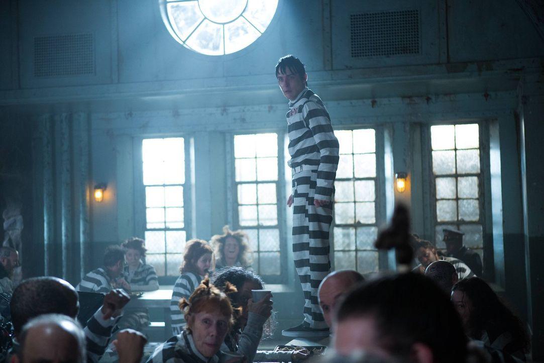 Während Mr. Freeze sein Unwesen in Gotham City treibt, findet sich Penguin (Robin Lord Taylor) in Arkham wieder ... - Bildquelle: Warner Brothers