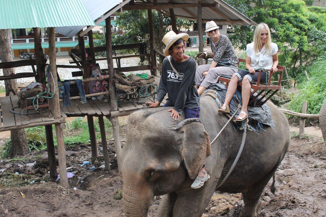 Thailand - 3 - Bildquelle: kabel eins