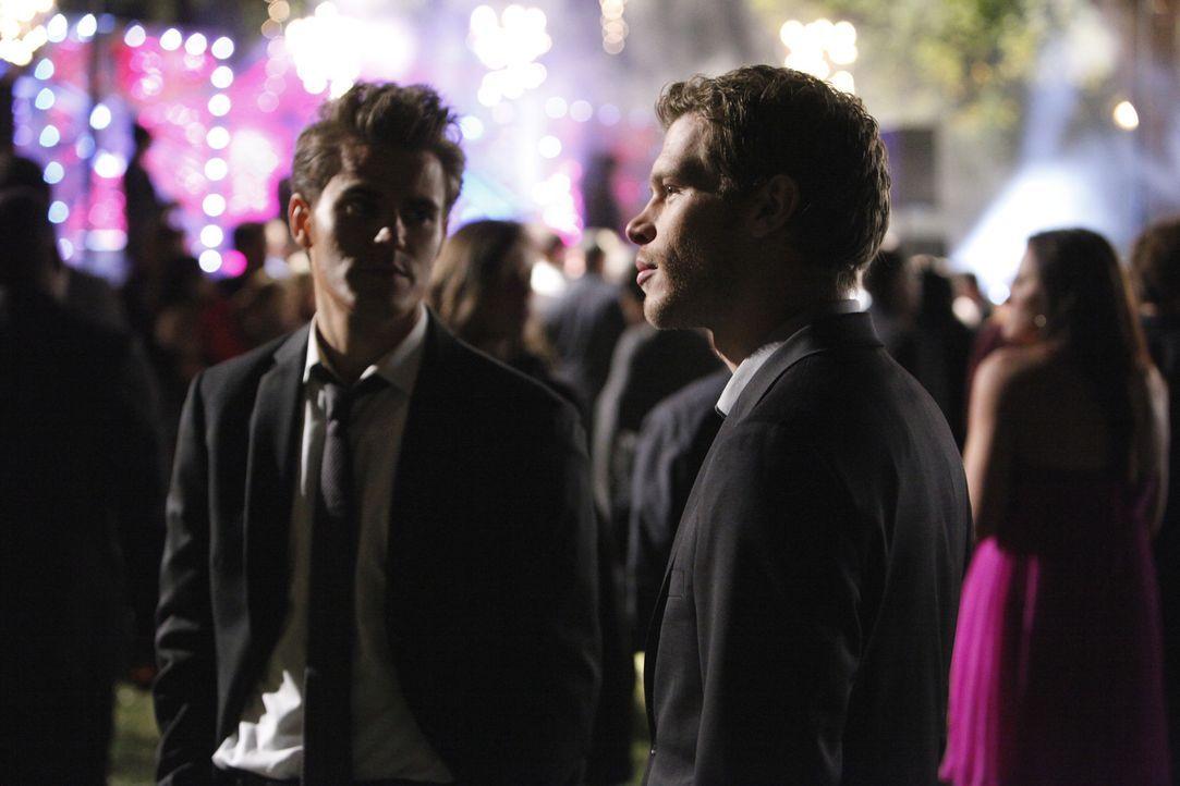 Stefan Salvatore (Paul Wesley, l.) verlangt von Klaus (Joseph Morgan, r.), ihm seine Freiheit wieder zu geben ... - Bildquelle: Warner Bros. Television