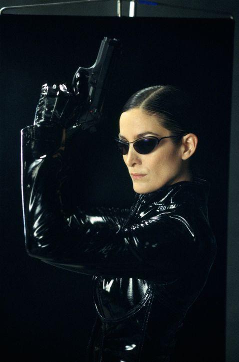 Während Trinity (Carrie-Anne Moss) den im Koma liegenden Neo bewacht, muss Morpheus die Erkenntnis verarbeiten, dass der Eine, auf den er seinen Gla... - Bildquelle: Warner Bros.