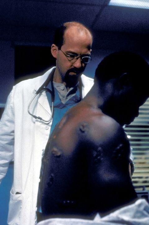 Dr. Greene (Anthony Edwards, l.) ist erschüttert, als er den Körper des jungen Nigerianers Mobalage (Djimon Hounsou, r.) sieht: Er ist von Brandwund... - Bildquelle: TM+  2000 WARNER BROS.