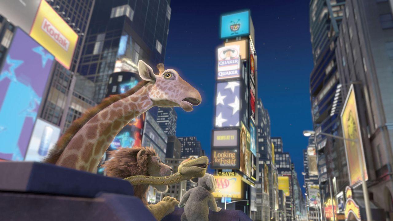 Der kleine Löwe Ryan hat genug vom New Yorker Zoo und seinem prahlerischen Vater. Er läuft weg. Dass er dabei in Afrika landet, ist nicht geplant. K... - Bildquelle: Disney Enterprises, Inc.  All rights reserved