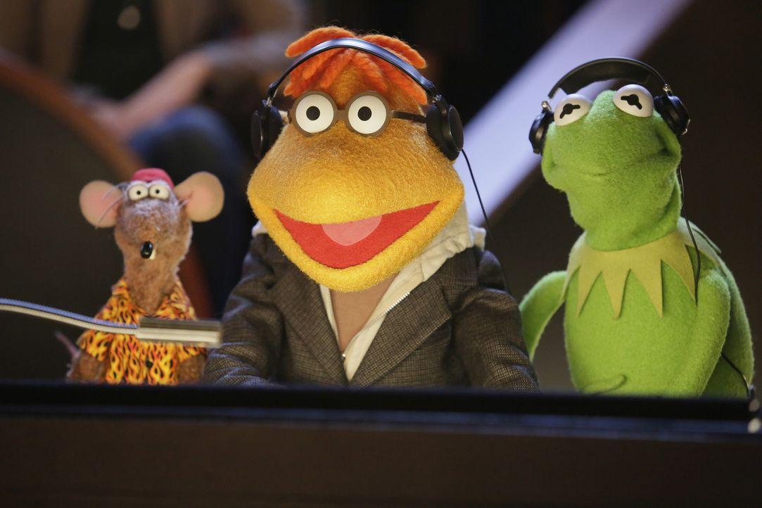 Kermit (r.) und Rizzo (l.) sind begeistert, weil Scooter (M.) die Schauspielerin Chelsea Handler zu Miss Piggy in die Show eingeladen hat ... - Bildquelle: Nicole Wilder ABC Studios